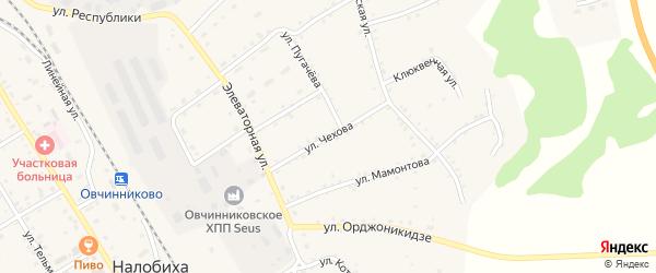 Улица Чехова на карте села Налобиха с номерами домов