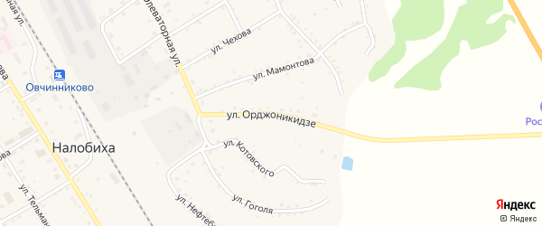 Улица Орджоникидзе на карте села Налобиха с номерами домов