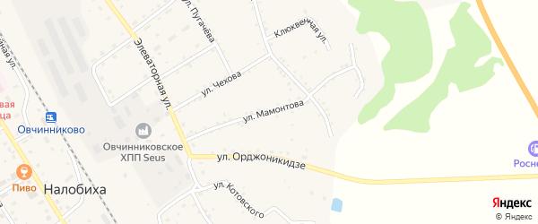 Улица Мамонтова на карте села Налобиха с номерами домов