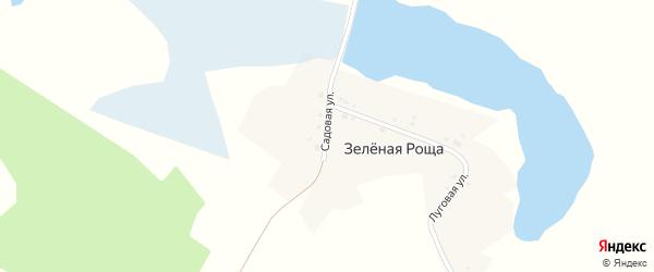 Садовая улица на карте поселка Зеленой Рощи с номерами домов