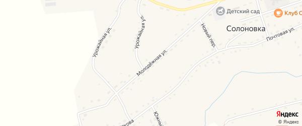 Молодежная улица на карте села Солоновка с номерами домов