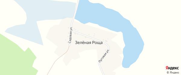 Луговая улица на карте поселка Зеленой Рощи с номерами домов