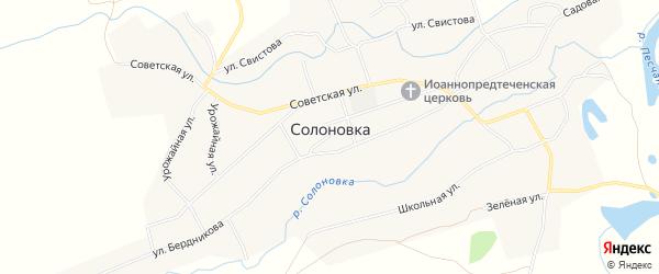 Карта села Солоновка в Алтайском крае с улицами и номерами домов