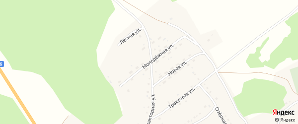 Молодежная улица на карте села Полковниково с номерами домов