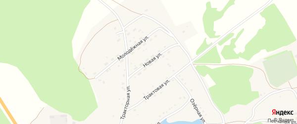 Новая улица на карте села Полковниково с номерами домов