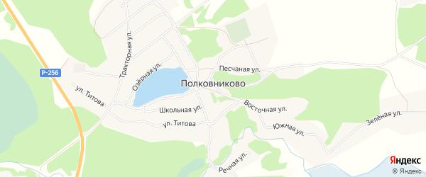Карта села Полковниково в Алтайском крае с улицами и номерами домов