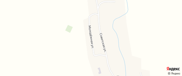 Молодежная улица на карте села Туманово с номерами домов