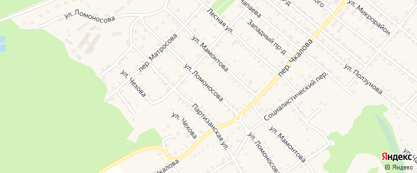 Улица Ломоносова на карте Троицкого села с номерами домов