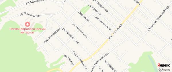 Улица Мамонтова на карте Троицкого села с номерами домов