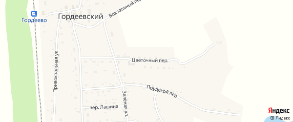 Цветочный переулок на карте Гордеевского поселка с номерами домов