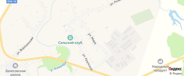 Улица Мира на карте села Залесово с номерами домов