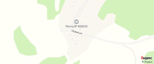 Новая улица на карте села Муравья с номерами домов