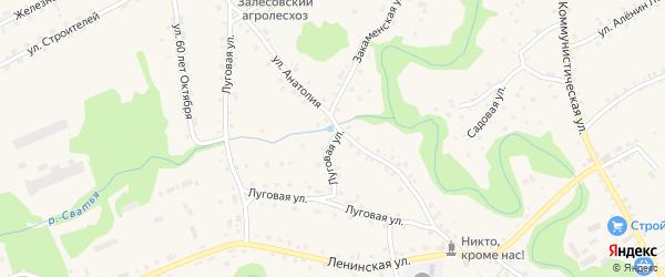 Луговая улица на карте села Залесово с номерами домов