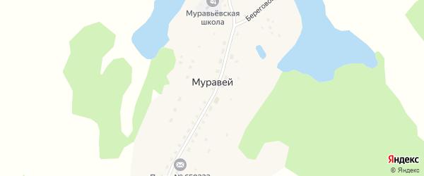 Березовый переулок на карте села Муравья с номерами домов
