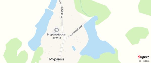Береговой переулок на карте села Муравья с номерами домов