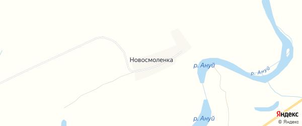 Карта села Новосмоленки в Алтайском крае с улицами и номерами домов