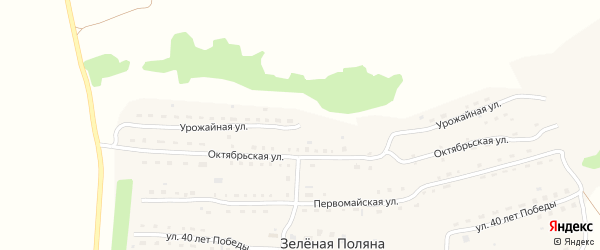Урожайная улица на карте села Зеленой Поляны с номерами домов