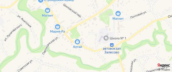 Школьный переулок на карте села Залесово с номерами домов