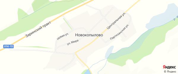 Карта села Новокопылово в Алтайском крае с улицами и номерами домов