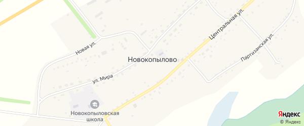 Дорожный переулок на карте села Новокопылово с номерами домов