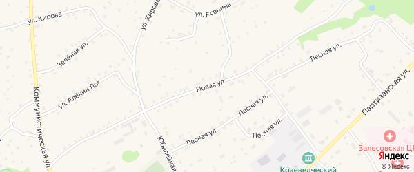 Новая улица на карте села Залесово с номерами домов