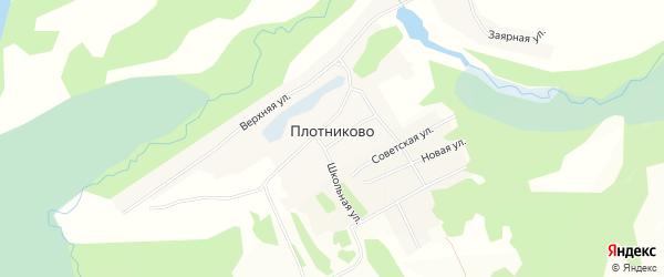 Карта села Плотниково в Алтайском крае с улицами и номерами домов