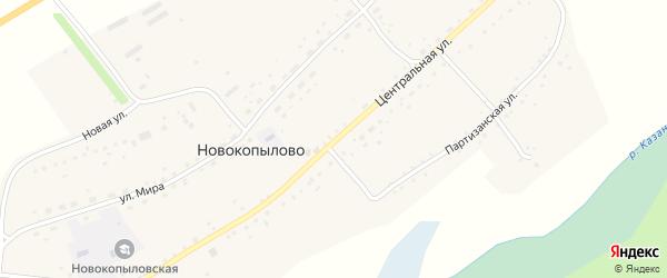 Центральная улица на карте села Новокопылово с номерами домов
