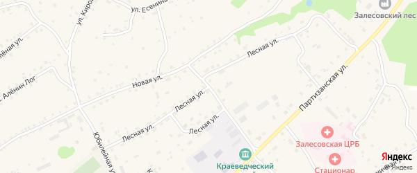 Лесная улица на карте села Залесово с номерами домов