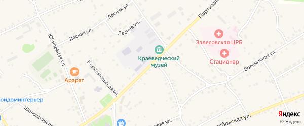Партизанская улица на карте села Залесово с номерами домов