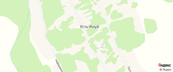 Центральная улица на карте села Усть-Ануй с номерами домов