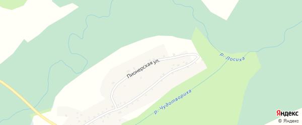 Пионерская улица на карте села Каркавино с номерами домов