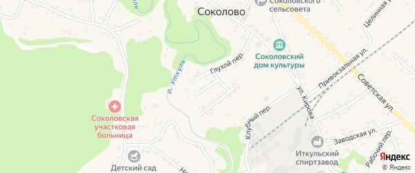 Малый переулок на карте села Соколово с номерами домов