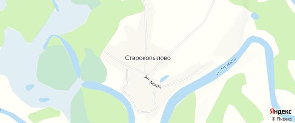 Карта села Старокопылово в Алтайском крае с улицами и номерами домов