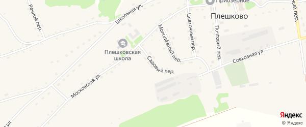 Садовый переулок на карте села Плешково с номерами домов