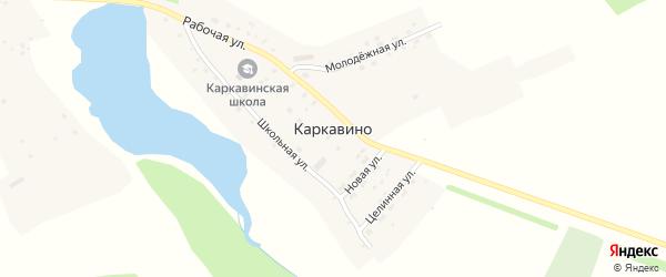 Школьная улица на карте села Каркавино с номерами домов