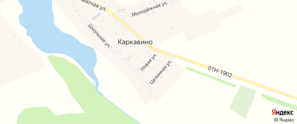 Новая улица на карте села Каркавино с номерами домов