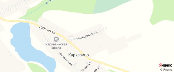 Молодежная улица на карте села Каркавино с номерами домов