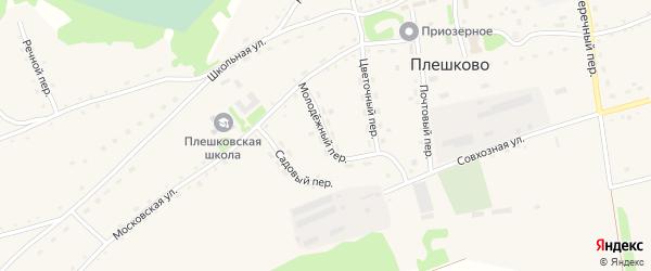 Молодежный переулок на карте села Плешково с номерами домов