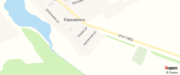 Целинная улица на карте села Каркавино с номерами домов