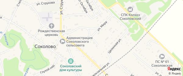 Молодежная улица на карте села Соколово с номерами домов