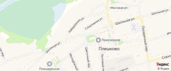 Школьная улица на карте села Плешково с номерами домов