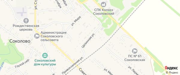 Целинная улица на карте села Соколово с номерами домов