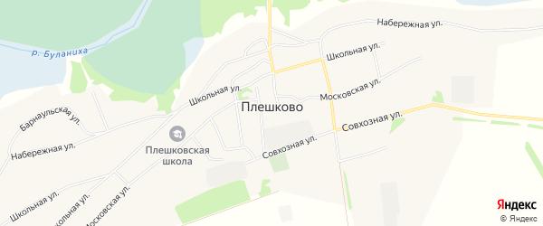 Карта села Плешково в Алтайском крае с улицами и номерами домов