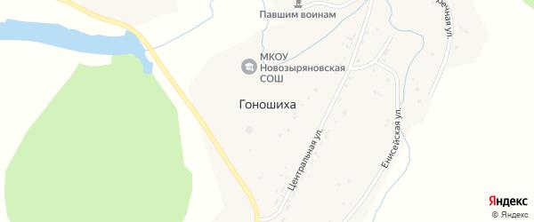Центральная улица на карте села Гоношихи с номерами домов