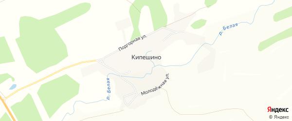 Карта села Кипешино в Алтайском крае с улицами и номерами домов