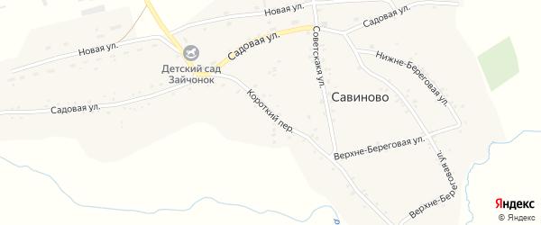 Короткий переулок на карте села Савиново с номерами домов