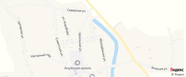 Молодежная улица на карте Ануйского села с номерами домов