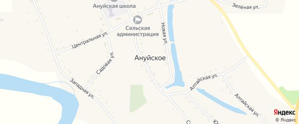 Центральная улица на карте Ануйского села с номерами домов