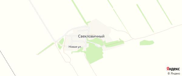 Карта Свекловичного поселка в Алтайском крае с улицами и номерами домов