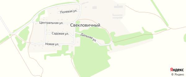 Дальняя улица на карте Свекловичного поселка с номерами домов